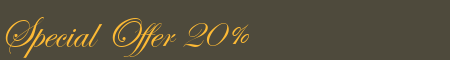 Special Offer 20%